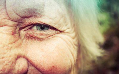 Neked fontos a látásod? 5 tipp a Hoyától szemünk egészségének megőrzéséért!